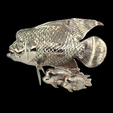 Brains Fish