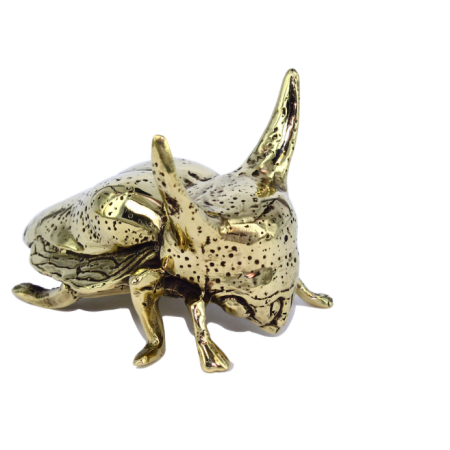unusual gifts, brass bugs