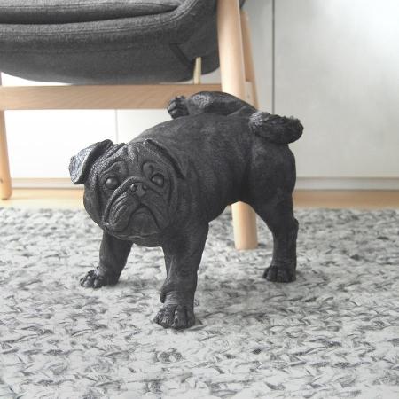 Peeing Pug