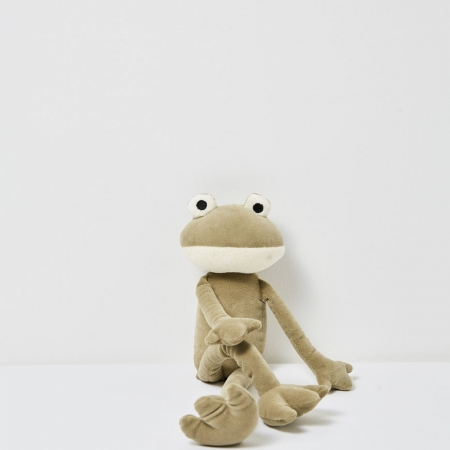 Ferdinand Frog Soft Toy