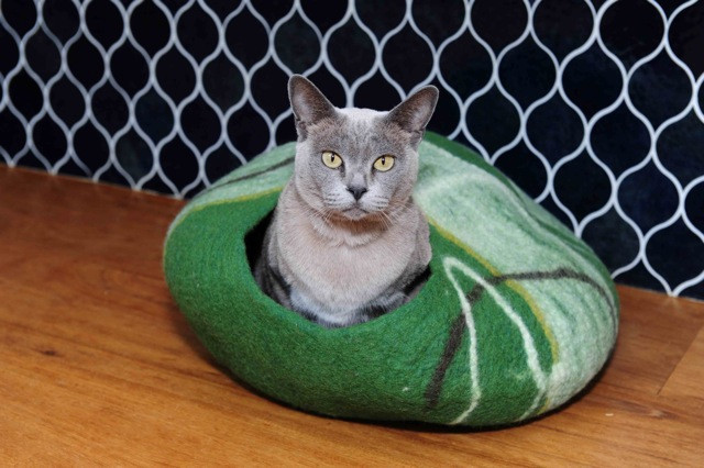 cat bed, pets beds, felt vat bed, travel beds for cats